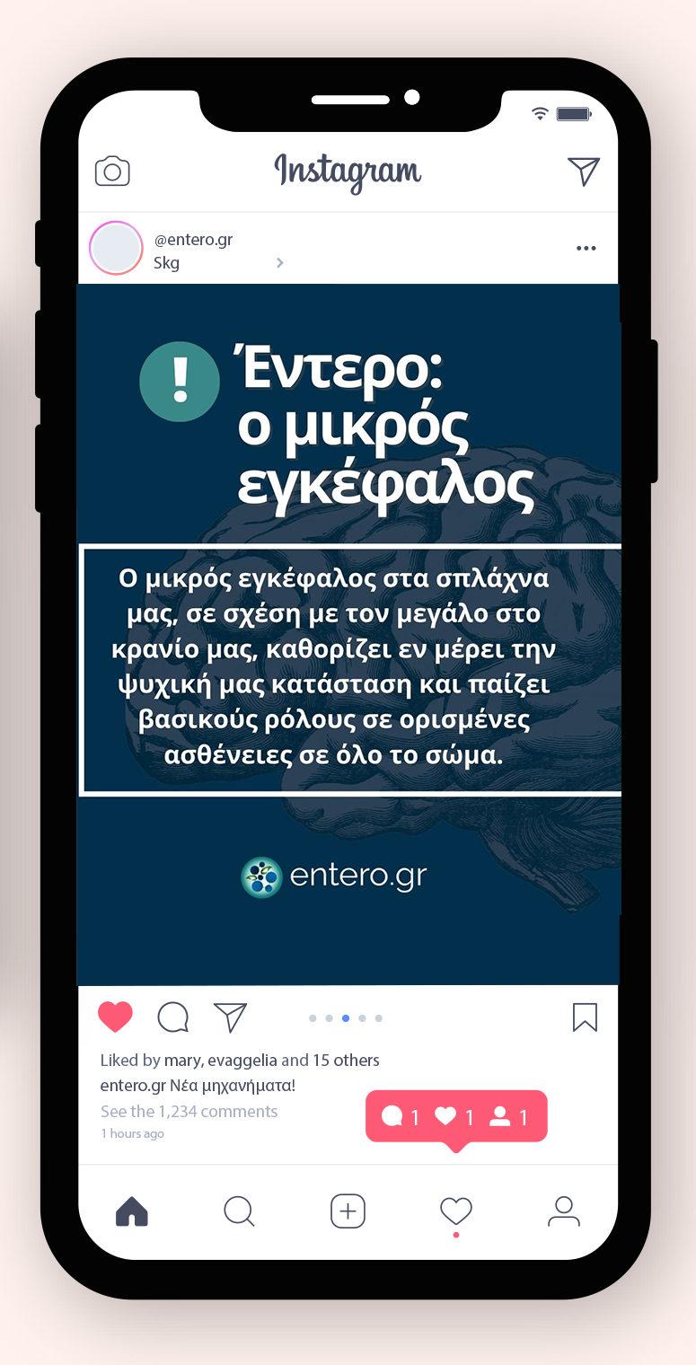 entero.gr
